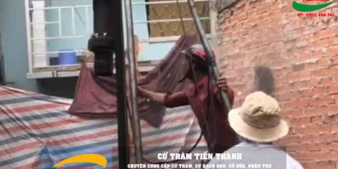 Xem Video công nhân đóng cừ tràm móng nhà bằng máy rung
